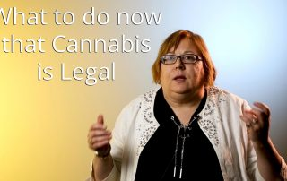 Canadian model drug and alcohol policy